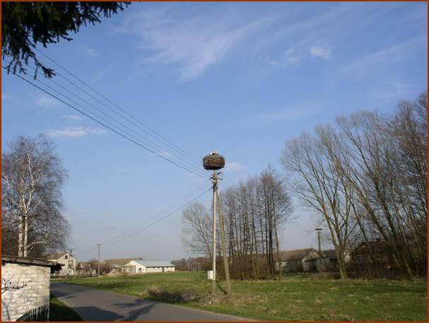 W drodze do Walinny. fot. JW